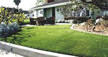 20mm landscaping grass, decorative turf, mono& curly yarn