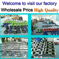 China factory wholesale price 24v 300w diving scooter sea scooter
