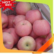 Professional Fruit Supplier freeze dried fruit juice powder