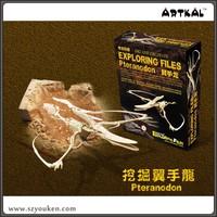 New design Pteranodon skeleton kid toy dinosaur fossils kit