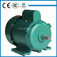 Factory sale OEM110v electric motor