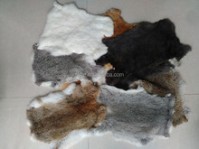 Factory wholesale raw rabbit skin with cheap price