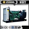 electric power generator dg6000se
