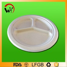 Hot Sales 9 inch biodegradable disposable tableware