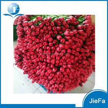 European market Red Color Artificial Flower