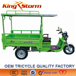 1000W solar electric 3 wheels for green recycle use ,Africa market popular