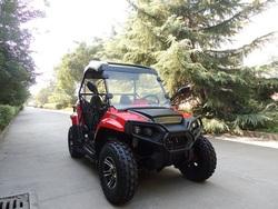 UTV,ATV 170 250 factory direct sale