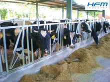 farm equipment,cattle headlock feeder