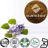 High Quality 10% to 98% Coleus Forskohlii Extract Forskolin CAS NO.: 66428-89-5