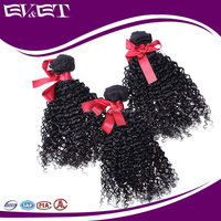EVET Hair Braizlian kinky curly hair extensions afro braiding pound hair for sale