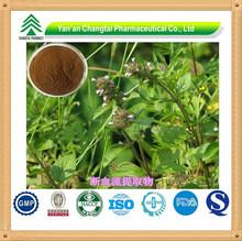 High Pure Herba Clinopodii Powder Extract