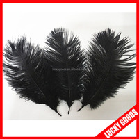 2015 hot sale 15-20cm black real bird feathers