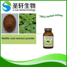 100% Natural nettle root extract powder in herbal extract