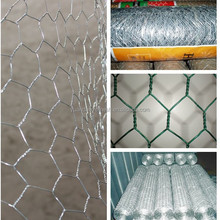 "24""*150'ft galvanized chicken poultry netting wire"