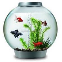 Modern Ddesign Clear Acrylic Aquarium Fish Tank For Home Hotel Decrative