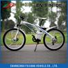 FUJIANG electric bike, electric bike controller, electric bike cover with EN15194