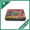 CARDBOARD BOX FOR FRUIT AND VEGETABLE