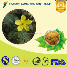 Free Sample Factory Supply Tribulus Terrestris Extract Powder Lowing Blood Pressure