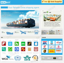 Professional international ocean freight forwarder