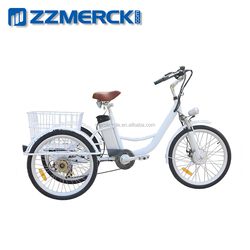 Three Wheels Lithium Battery Electric Tricycle