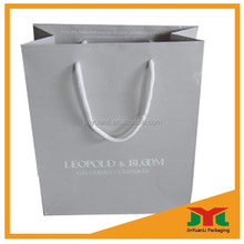 Paper Product/Packing Bag/Paper Packaging Bag