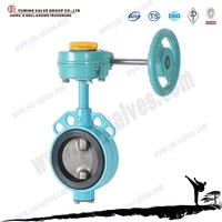 Worm gear operated rubber seal wafer 1inch butterfly valve