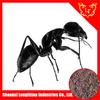 Mountain black ant powder 20:1 to promote man sex function