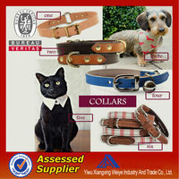 Latest multicolor promotional dog collar and leash for your own pet