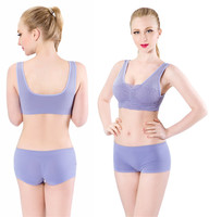 6906-6 nice purple under wear colorful Wholesale 2015 sexy women bra girl sex night bra export brazil