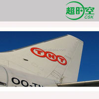 TNT International Express Delivery