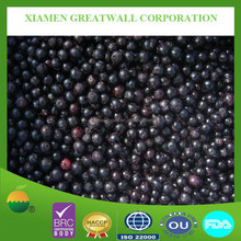 Frozen blueberry with best price