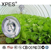 XPES lvd flood light, energy saving lamp,magnetic induction grow lights