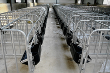 round steel tube pig sow gestation crate with plastic feeders