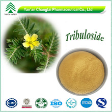 High quality Hot sale Tribulus terrestris extract Steroidal Saponins
