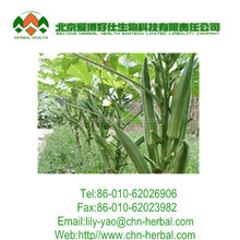 Hight quality dried okra powder,Okra Extract 10:1