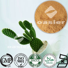 ISO Kosher Certificate Pure Natural 20:1 50:1 100:1 Cactus Extract Powder