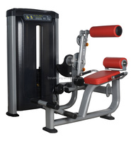 Multi Commercial grade gym equipment/AB/low back exercise/Gym training equipment/Factory direct sales