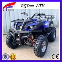 250cc Chinese ATV Reverse Trike