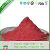 Alibaba china hot sale dried acai berry fruit powder bulk