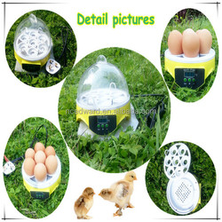 economical and cheap automatic Mini cheap egg incubator for sale