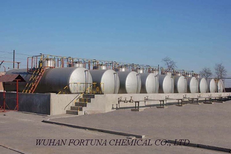 Wuhan Fortuna Chemical.jpg