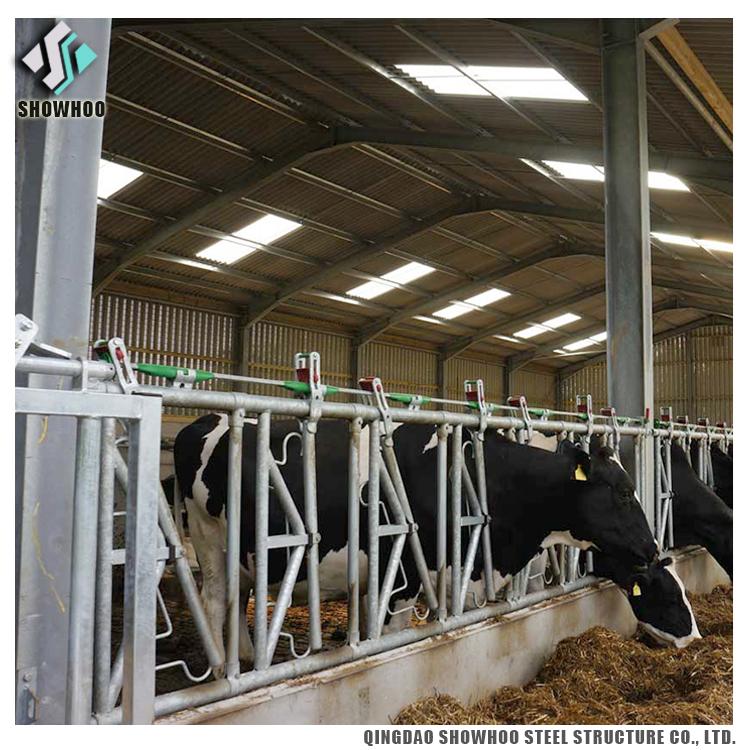 0851_cow_barn