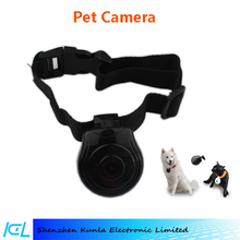 Puppy video recorder for wandering funny sharing