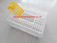 cheapest plastic chicken transport crate for sale