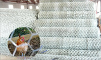 Cheap chicken coop hexagonal wire mesh made of hexagonal wire mesh