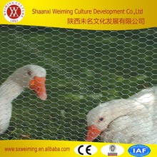 Facroty Price Chicken Cage, Rabbit Cage, Coated Chicken Wire