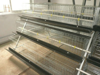 Best sale layer egg chicken cage/poultry farm house design HJ-HC60