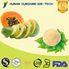china manufacturer 100% Natural Papaya Juice Powder as raw material for beverage