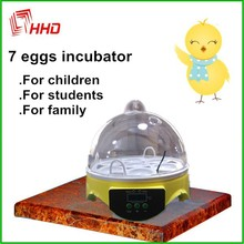 Full Automatic 7 Eggs Cheap reptile supplies For Sale Household christmas ornament