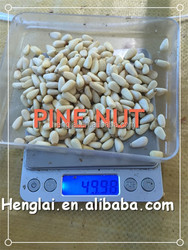 chinese white pine nuts prices in agriculture